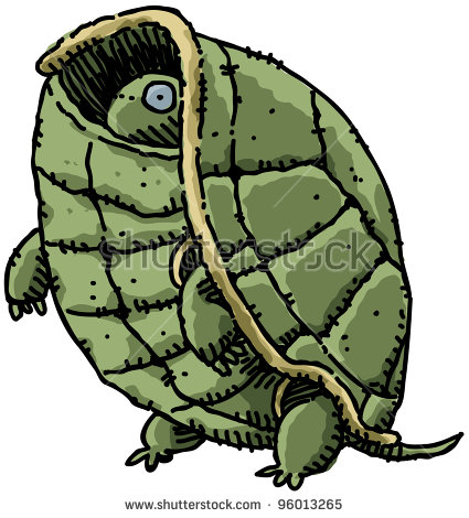 https://thumb9.shutterstock.com/display_pic_with_logo/776008/776008,1330143193,5/stock-photo-a-cartoon-turtle-peeks-out-from-inside-his-shell-96013265.jpg