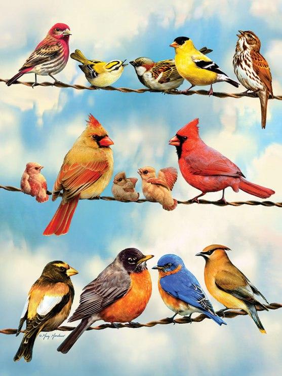 52093-birds-on-wire