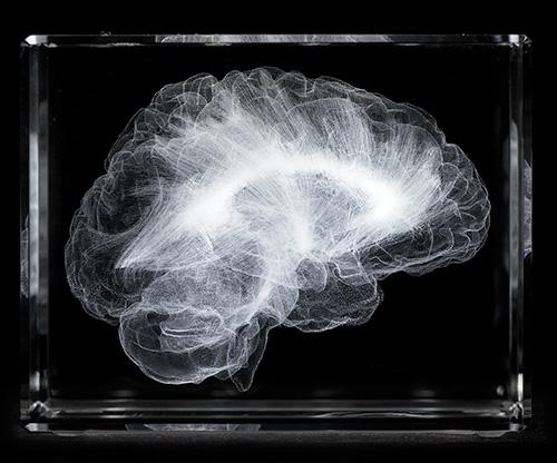 c-brain_afront